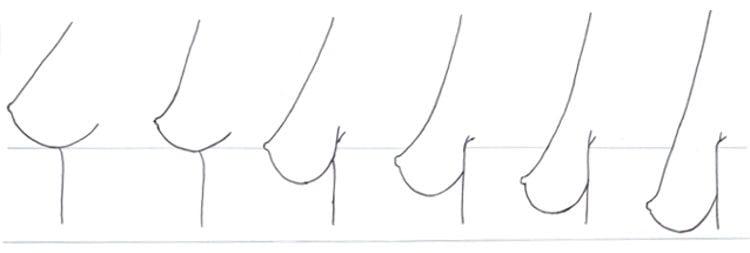 grados de descolgamiento de senos