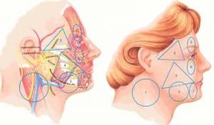 Las 7 zonas faciales que requieren especial cuidado